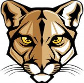 Cougar Panther Mascot Head