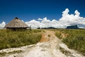picture of canaima  - Indian hut nearby Orinico river and Auyan - JPG