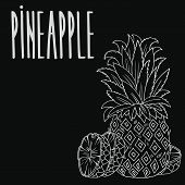 Isolate Ripe Ananas Fruit As Chalk On Blackboard. Close Up Clipart In Chalkboard Style. Hand Drawn I poster