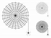 Spider Net Composition Of Unequal Items In Variable Sizes And Shades, Based On Spider Net Icon. Vect poster