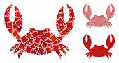 Crab Mosaic Of Uneven Items In Different Sizes And Color Hues, Based On Crab Icon. Vector Ragged Ite poster