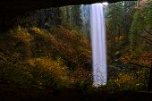 Beautiful Autumn Landscape In Silver Falls State Park Near Salem In Oregon. Behind A Waterfall Hikin poster