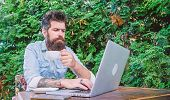 Work And Play Give Him Rest And Energy. Bearded Man Doing His Work Online. Hipster Drinking Tea And  poster