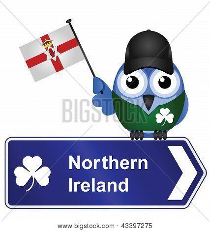 Постер, плакат: Страны подписать Северной Ирландии, холст на подрамнике
