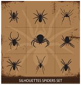 stock photo of black widow spider  - nature spiders silhouettes symbols vector black collection - JPG