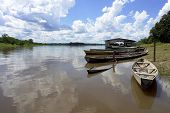 Amazon River Boat Pear