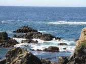 foto of mendocino  - This is a beautiful picture of the ocean crashing against the rocks in Mendocino - JPG