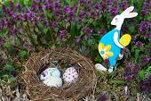 Nest With Easter Eggs And Easter Bunny