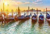 picture of gondola  - Venetian gondolas at sunrise - JPG