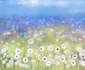 stock photo of daisy flower  - Abstract flowers plant painting - JPG