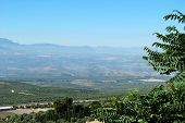 image of baeza  - Olive groves and surrounding countryside Baeza Jaen Province Andalusia Spain Western Europe - JPG