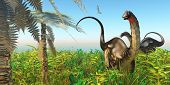 image of apatosaurus  - A Pteranodon flies past two Apatosaurus dinosaurs in a lush Cretaceous jungle - JPG