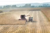 picture of combine  - Combine harvester and tractor working in soybean field in autumn - JPG