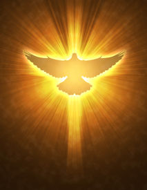 image of holy-spirit  - shining dove with rays on a dark golden background - JPG