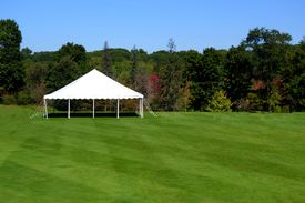 picture of canopy roof  - a white events tent on a plush green lawn - JPG