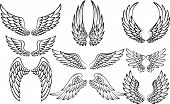 stock photo of spread wings  - vector illustration of Cartoon wings collection set - JPG