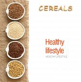 stock photo of cereal bowl  - Cereals in bowls border with word Cereals isolated in white - JPG