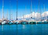 Постер, плакат: Catamaran Yachts And Boats In The Harbor