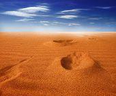 foto of footprints sand  - Footprints on sand dune - JPG
