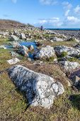 picture of lowlands  - Lowland point near coverack in cornwall england uk stunning coastline great for walkers - JPG