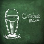 foto of cricket  - Creative winning trophy drawn by white chalk on chalkboard background for Cricket Mania - JPG