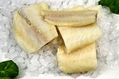 picture of cod  - True Alaskan Cod portions with fresh basil - JPG