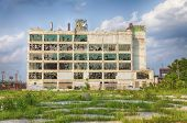stock photo of weed  - An old factory in the Highland Park area shows the post - JPG