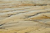 stock photo of tide  - Low tide on the Sound provides unique patterns  - JPG