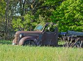 pic of logging truck  - Tree growing in a cab of rusty old truck - JPG
