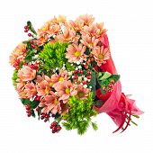 picture of carnation  - Bouquet of gerbera carnations and other flowers isolated on white background - JPG
