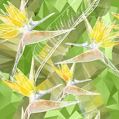 picture of bird paradise  - Vector Seamless background with blooming Bird of Paradise flowers in triangles style - JPG