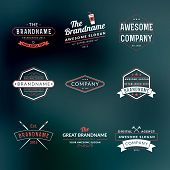 Set Of Hipster Vintage Labels, Logotypes, Badges For Your Business poster