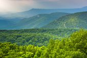 stock photo of virginia  - View of the Blue Ridge Mountains from Loft Mountain in Shenandoah National Park Virginia - JPG