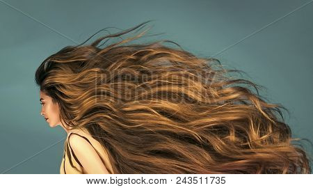 poster of Sensual Sexy Woman. Sensual Sexy Woman. Hairdresser Salon And Barber. Beauty And Fashion. Hair Style
