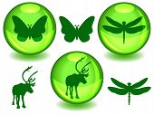 picture of caribou  - Butterfly dragonfly and caribou or reindeer silhouettes on their own or in glossy green sphere with drop shadow perfect symbols for ecology or biodiversity protection - JPG