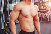 Muscular Bodybuilder Man Showing Muscular Body And Sixpack Abs At A Gym poster