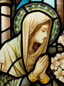 stock photo of stained glass  - Stained glass in Catholic church in Dublin showing Our Lady - JPG