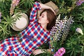 Sweet Girl Sleeping In A Meadow Grass Full Of Lupine Flowers. Top View Portrait. poster