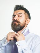 Fashion Sexy Businessman Fastens Buttons On Shirt. Brutal Bearded Man In White Classic Shirt Button  poster