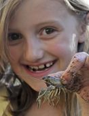 image of crawdads  - A Thrilled Little Girl Holds Up a Crayfish She Caught - JPG