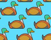Drake Duck Pattern Seamless. Waterfowl Bird Background. Vector Illustration poster