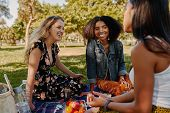 Group Of Smiling Multiracial Female Best Friends Sitting Together On Blanket With Fruits Enjoying At poster