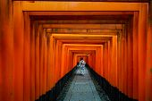 Geishas Walking And Sightseeing Among Red Wooden Tori Gate At Fushimi Inari Shrine In Kyoto, Japan.  poster
