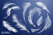 White Realistic Bird Feathers. Vector Flying Feathers Set With Transparency. Clipart Collection. Plu poster