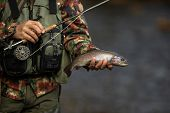 Close-up view of the hands of a fly fisherman holding a lovely trout while  fly fishing on a splendi poster