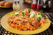 Rigatoni With Sausage And Mozzarella Cheese