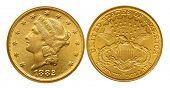 picture of twenty dollars  - Twenty dollars gold coin from nineteenth century named Liberty - JPG