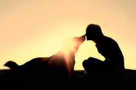 picture of pal  - a silhouette of a happy young woman is sitting outside at sunset lovingly kissing her large German Shepherd mix breed dog - JPG