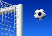 image of game-cock  - football entering the net scoring a goal - JPG