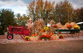 picture of hayride  - Old tractor as fall harvest decor in yard - JPG